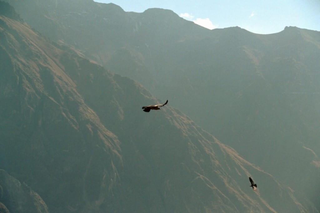 On the summit of Nevado Chachani (6075 m), Arequipa region, Peru, August 2004