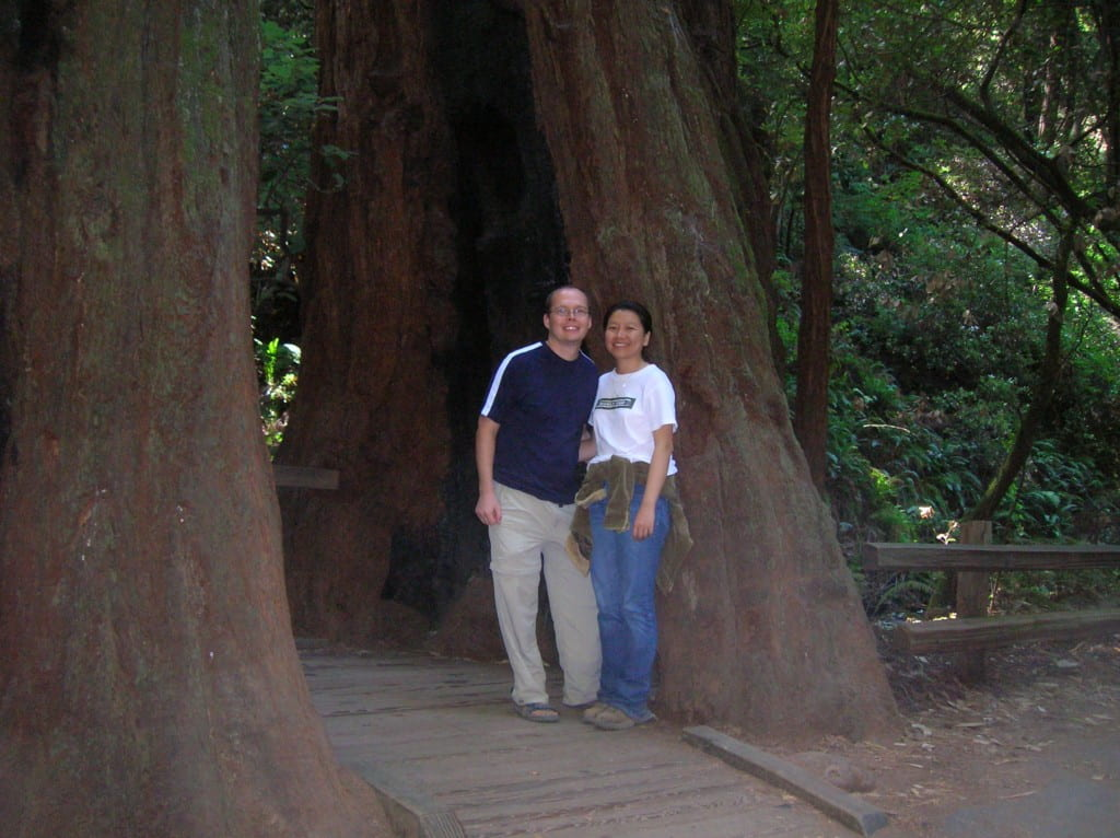 Muir Woods National Monument, CA, August 2006