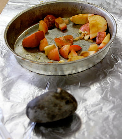 Kwakiutl steamed apples and mashing stone. Photo A. Rivera.