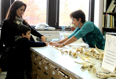 Jean Hudson, UW-Milwaukee, explains what animal bones can tell us about diet. Photo J. Waldbaum.