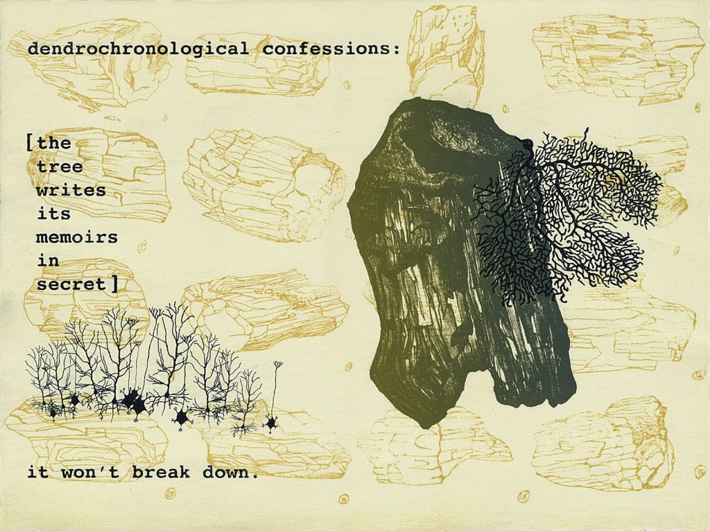 Petrified: Confessions2015, lithograph, 11 x 15 inches