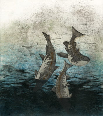 Falling Fish2006, lithograph, etching, aquatint, chine collé, 8 x 7.5 inches