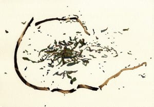 Death of a Leafy Spurge: Day 72014, watercolor on Arches, 7 x 10 inches