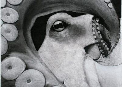 """Octopus"" by Hope Asako Poynter"