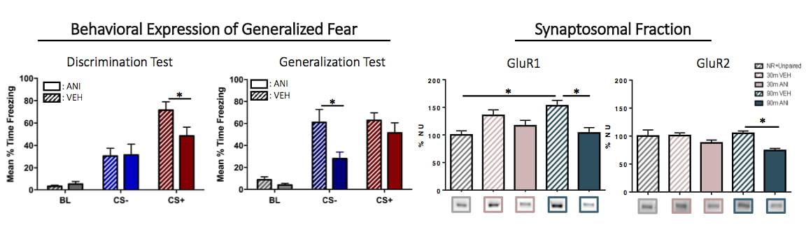 Fear Generalization