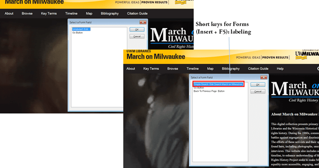 """Select a Form Field interface with suggested renaming of """"Unlabeled1 Edit"""" to """"Simple Search Edit Search March on Milwaukee"""", Short keys for Forms (Insert + F5): labeling"""