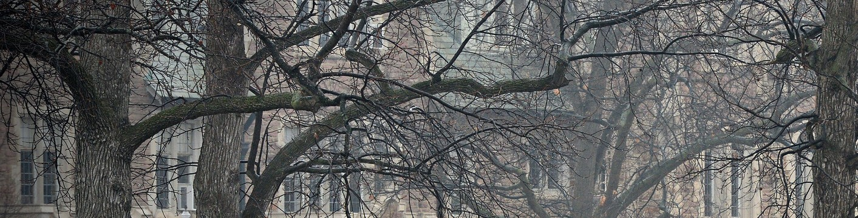 WU in Winter