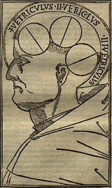image_of_the_brain_from_1496_venice_incunabulum_of_albertus_of_orlamunde_philosophia_pauperum_becker_library