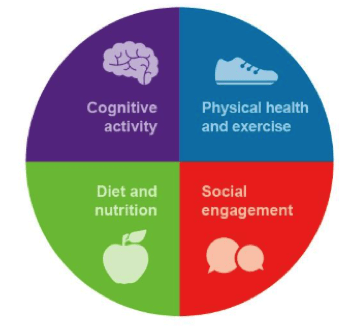 Healthy Aging Four Pillars Institute For Public Health Washington University In St Louis