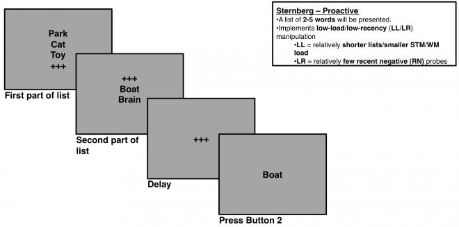 Sternberg Proactive