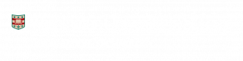WashU IT Logo