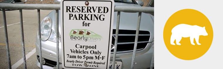 Bearly Drivers Carpool