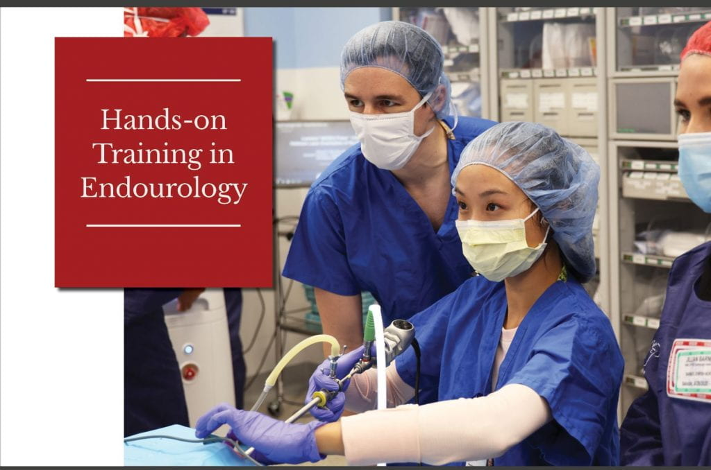 Hands-on Training in Endourology