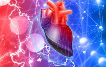Jonathan Silva, ion channels, cardiac arrhythmias
