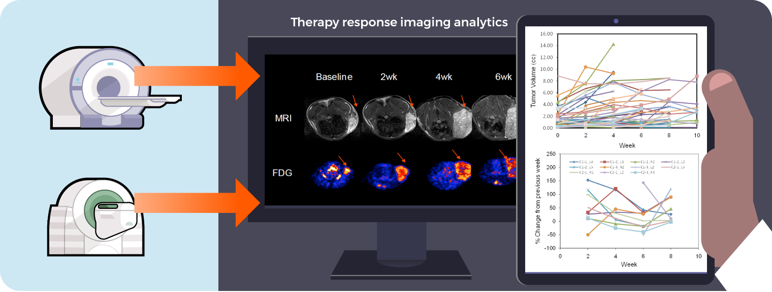 Grain Aim 3 - Therapy Response Analytics