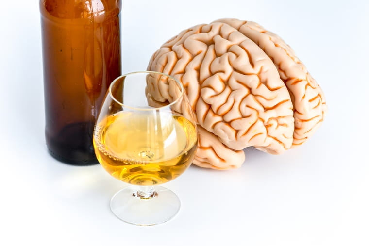 Which came first: brain size or drinking propensity?