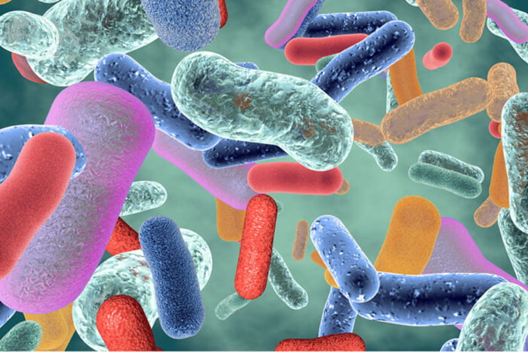 NIH gives major boost to microbiome research on Medical Campus