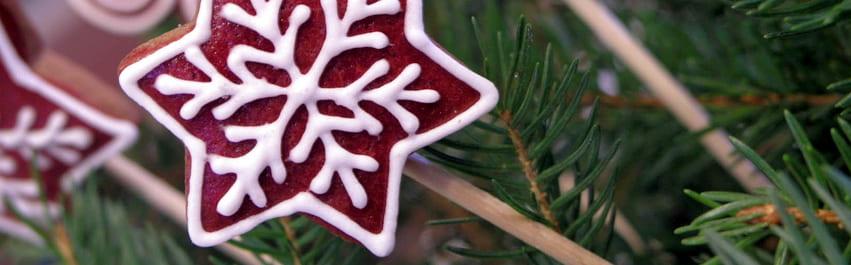 holiday cookie header