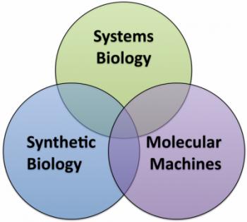 themes venn diagram 2_0