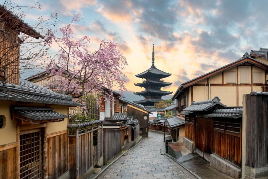 Pakrasi Organizes US-Japan Binational Workshop on Photosynthesis