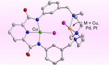 Molecular Diagram (pink background)