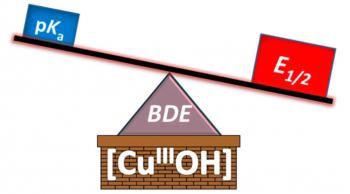 Copper(III)-Hydroxide Fulcrum