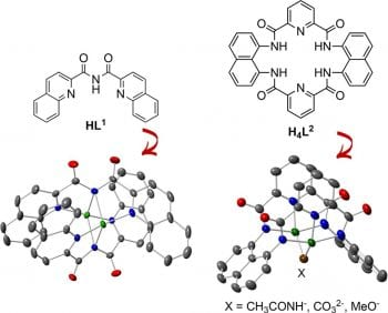 Copper complexes of multidentate carboxamide ligands