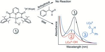 Revisiting the Synthesis and Nucleophilic Reactivity of an Anionic Copper Superoxide Complex