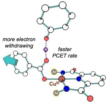 Carboxylate Structural Effects on the Properties and Proton-Coupled Electron Transfer Reactivity of [CuO2CR]2+ Cores