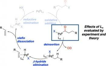 Ligand Effects on Decarbonylation of Palladium-Acyl Complexes