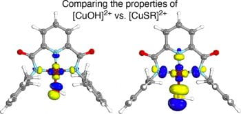 Sulfur-Containing Analogues of the Reactive [CuOH]2+ Core