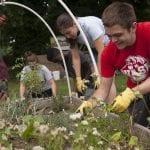 students-volunteering-in-community-gardent