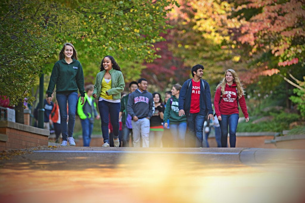 Students in WashU apparel walk outdoors in the fall