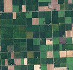 Aerial photo of agriculture fields in Minnesota.
