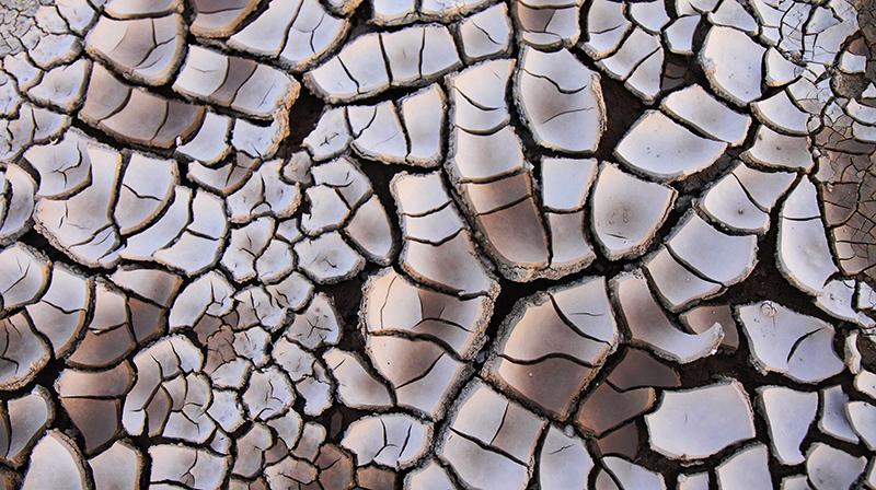 Photo of dry soil.