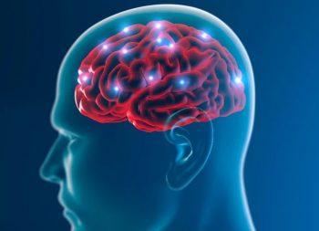 Molecule Throws Roadblock in Alzheimer's Path