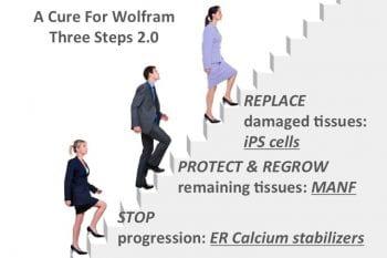Wolfram Cure 3 Steps