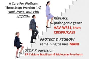 Cure for Wolfram 4.0