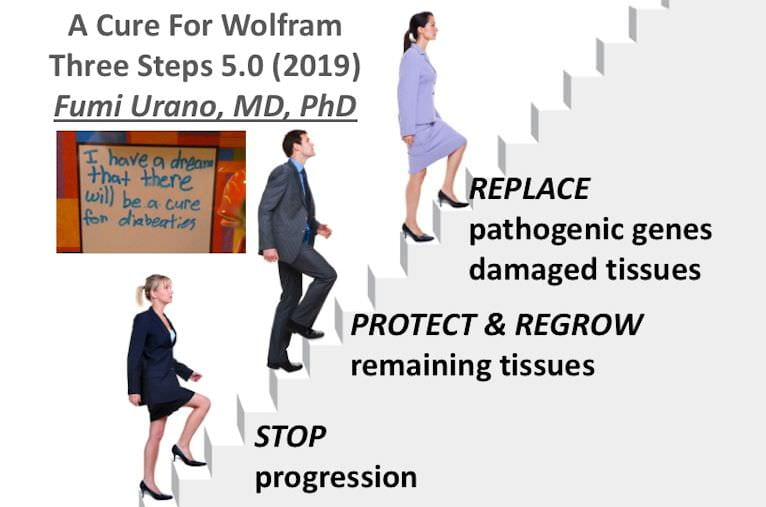 Thank you everyone for the Wolfram Research Clinic and Conference