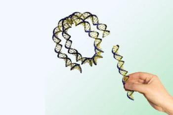 Regenerative Gene Therapy