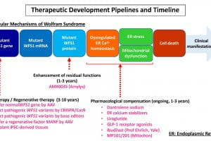 Therapeutic Development Pipelines and Timeline