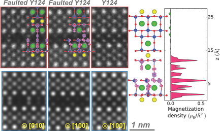 19. Emerging diluted ferromagnetism in high-TCsuperconductors