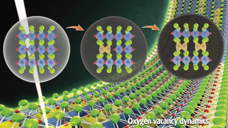 26. Observation of vacancy dynamics in oxides
