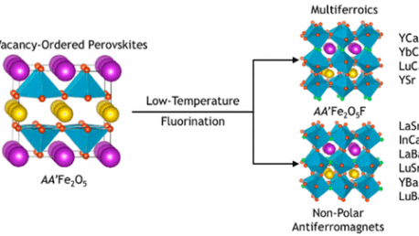 36. Multiferroism in Iron-Based Oxyfluoride Perovskites