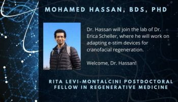 Postdoc Dr. Mohamed Hassan awarded RLM fellowship