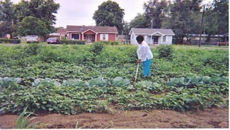 Healthier Missouri Communities (Healthier MO)