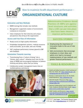 Organizational Culture (pdf)