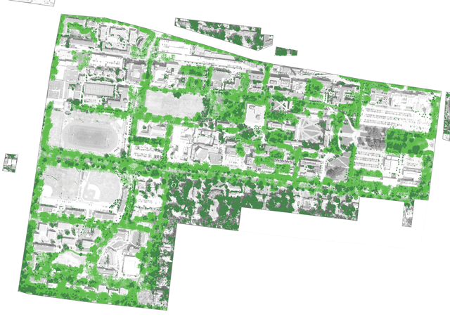 35% of the campus is covered with tree canopy.