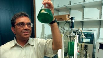 Himadri Pakrasi of ICARES holds a beaker to the light. He researches cyanobacteria.