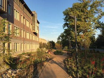 Hillman Hall Landscape